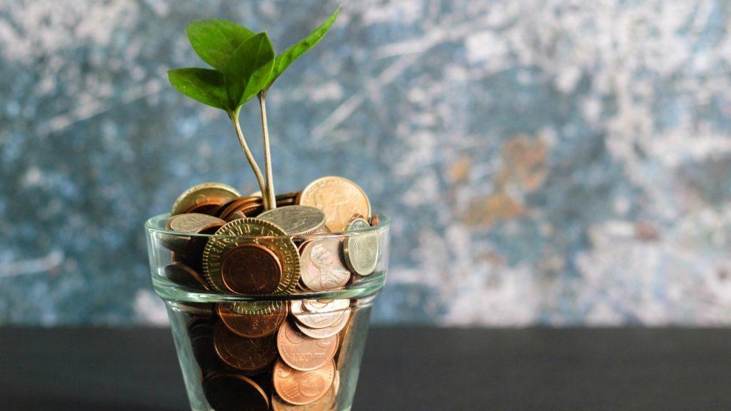 pflanze wächst aus einem glas voll geldstücke